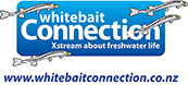 Whitebait connection