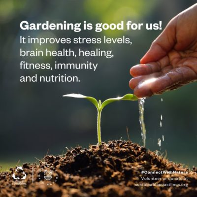 Urban nature_Fact_Gardening is good for us