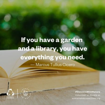 Urban nature_Quote_Garden and a library